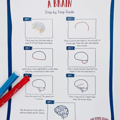 Poster: How to draw a brain
