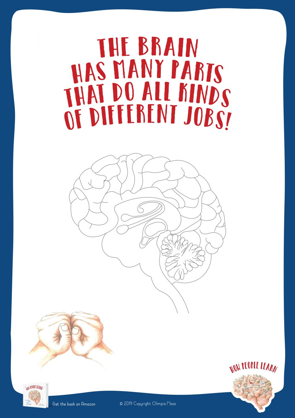 The brain has many parts that do all kinds of different jobs!